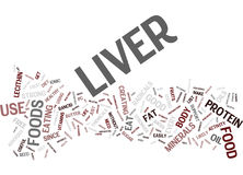 Liver Foods That Make Your Liver Stronger And Useful Text Background  Word Cloud Concept. LIVER FOODS THAT MAKE YOUR LIVER STRONGER AND USEFUL Text Background Royalty Free Stock Images