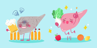 Liver with health concept. Cute cartoon liver with health concept on green background Royalty Free Stock Photography