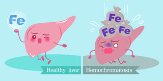 Liver with health concept Royalty Free Stock Photography