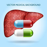 Liver puzzle and pills. Vector medical background. Liver puzzle and pills. Medical background. Care organ, healthy and capsule or tablet, vector illustration Royalty Free Stock Images