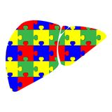 Liver with puzzle red blue green yellow. Icon black color vector illustration isolated Royalty Free Stock Photos