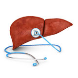 Liver and a stethoscope Royalty Free Stock Images