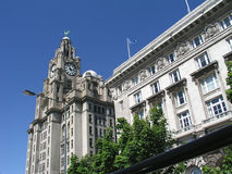 Liverpool Architecture. The Royal Liver and Cunard Buildings Royalty Free Stock Photos