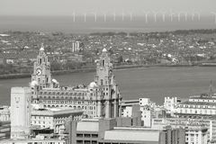 Liverpool black white Stock Images