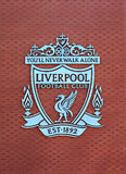Liverpool futbolu klubu grzebień na nowym magistrala stojaku zdjęcie royalty free