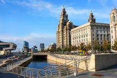 Liverpool leverbyggnad och sjösida Fotografering för Bildbyråer