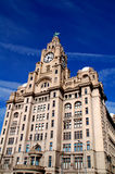 Liverpool Liver Building. The Royal Liver Building on the Pierhead at Liverpool showing one of the world famous Liverbirds royalty free stock photos