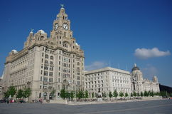 Liverpool liver building. Liverpool liver old building center Royalty Free Stock Image