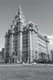 Liverpool, UK Royalty Free Stock Photo