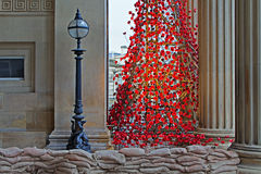 LIVERPOOL UK, DECEMBER 8TH 2015 Gråta fönstret Poppy Sculpture Arkivbilder
