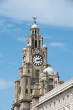 Liverpool. View of Royal Liver Building in Liverpool Royalty Free Stock Images