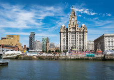 Liverpool waterfront. The Royal Liver Building on Liverpool waterfront seen from the River Merseyn royalty free stock photo