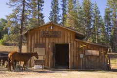 Livery Stable. A horse in front of stable in mountains Stock Photography