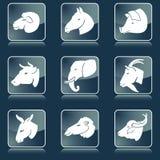 livestock απεικόνιση αποθεμάτων
