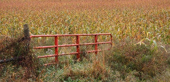 Livestock Gate Royalty Free Stock Images