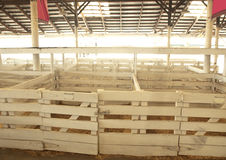 Livestock stalls. For showing farm animals for competitions Stock Photography