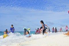 Livet på de Maldiverna stränderna, Royaltyfria Bilder