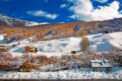 Livigno nell'inverno fotografie stock libere da diritti