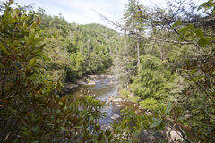 Liville River Stock Photography