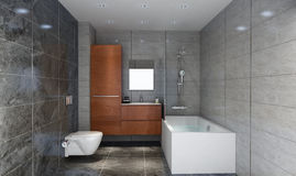 Living bathroom Royalty Free Stock Photo