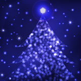 The living christmas tree Stock Photography
