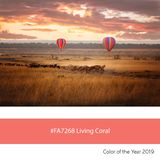 Living Coral Color of the Year, balloons over the Masai Mara royalty free stock image