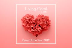 Living Coral color of the Year 2019 Heart shape made of flowers royalty free stock photos