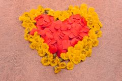 Living Coral color of the Year 2019. Heart shape made of flowers. Valentine`s day Color palette. Love fashion stock photography