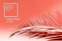 Living Coral color of the year 2019. Main trend natural and authentic concept vector illustration