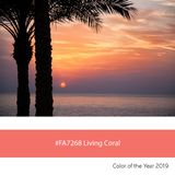 Living Coral Color of the Year, palm trees at sunrise stock images