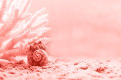Living Coral color of the Year 2019. Trendy color.  royalty free stock photo