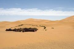 Living in the desert. Berber tent in the dunes of the Sahara desert. Best of Morocco Royalty Free Stock Photo