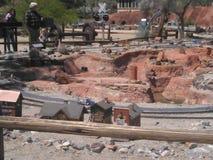 Living desert zoo Stock Photo