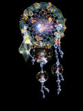 The Living Dream Catcher Royalty Free Stock Photo