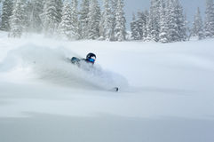 Living the Dream. Skier in deep powder snow floating through a highspeed turn Royalty Free Stock Photos