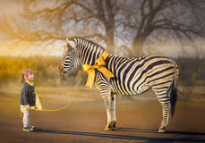 Living gift. Little girl walking with her pet zebra
