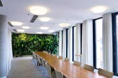 Living green wall, vertical garden indoors with flowers and plants under artificial lighting in meeting boardroom. Modern office building stock images
