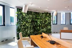 Living green wall, vertical garden indoors with flowers and plants under artificial lighting in meeting boardroom. Modern office building stock image