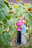 Living happy children brother and sister in the thickets of sunflower in the backyard of the farm royalty free stock image