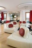 living luxurious room στοκ εικόνες