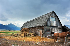 Living in Montana Weather Royalty Free Stock Photography