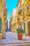 Quiet neighborhoods of Birgu, Malta. The living neighborhood of the city with quiet streets, decorated with plants in pots amid the road and along the old stock image