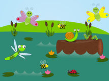 Living in the pond. Illustration of a colorful pond scene with different flowers and bugs Stock Photo