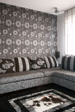 Living room. With sofa and carpet royalty free stock image