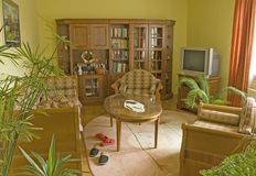Living room. Yellow Living room with green plants and carpet Royalty Free Stock Image