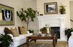 Living Room. A  living room area in a southern Californian house Stock Photography