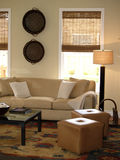 Living Room. Room in tan Stock Photography