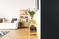 Living room with black wall. Living room with black and white wall, sofa, bookcase stock image