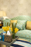 Living room. Classical luxurious living room,wide open Royalty Free Stock Photography