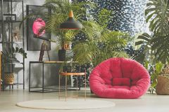 Living room with copper table. Plants behind pink pouf on floor in living room with copper table on white carpet and telescope on desk Royalty Free Stock Photo